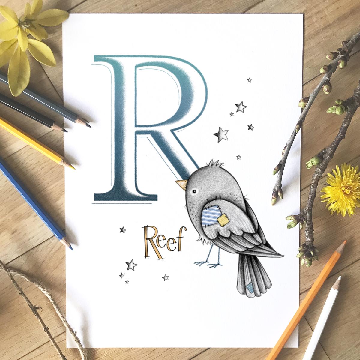 Bird Initial Colour