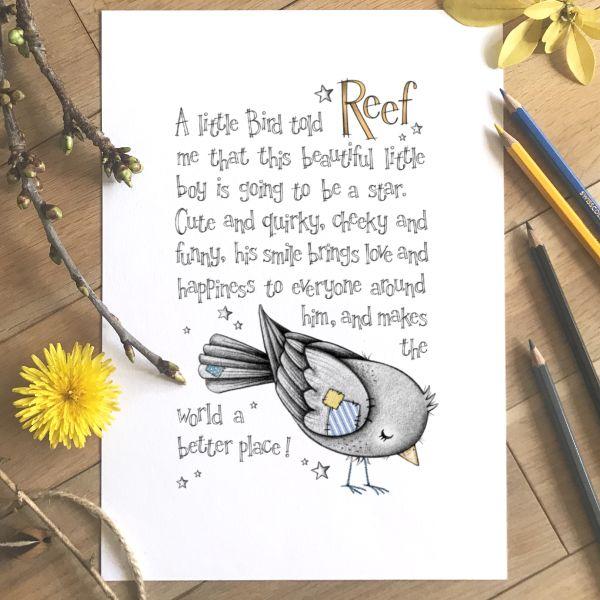 Bird Story Colour