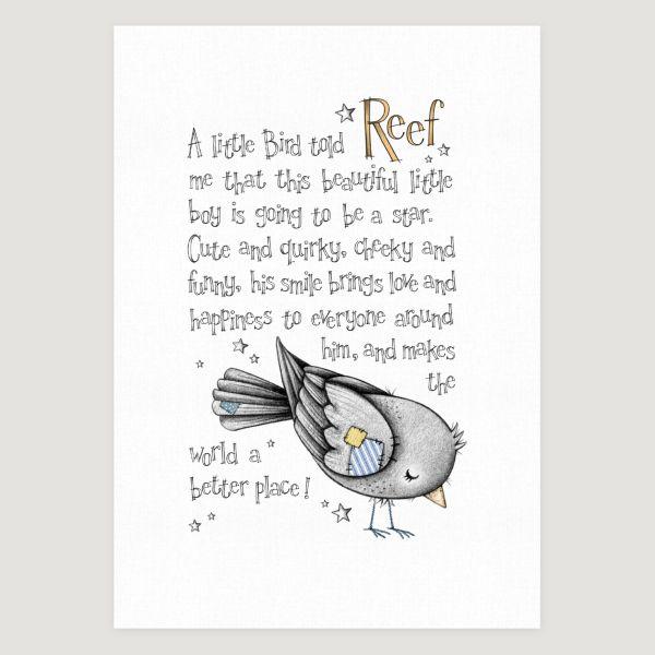 Little Bird Story Colour