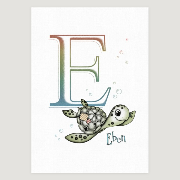 Little Sea Turtle Initial Colour