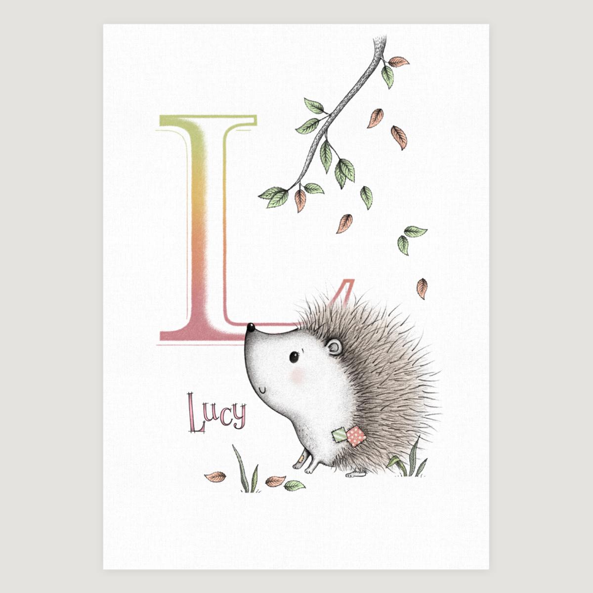 Little Hedgehog Initial Colour
