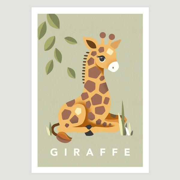 Giraffe sage
