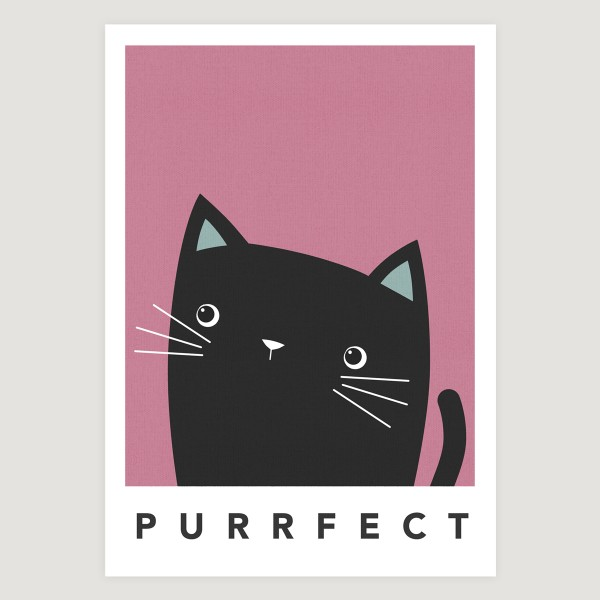black cat cheeky pink