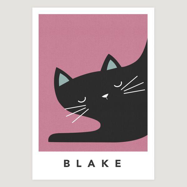 black cat sleepy pink
