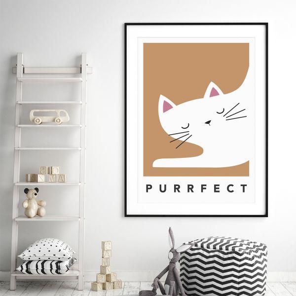 white cat sleepy framed orange