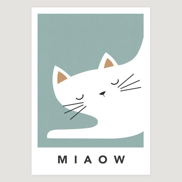 white cat sleepy teal